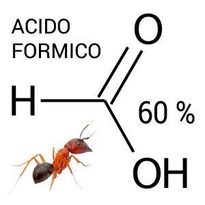 Prodotti anti varroa base di acido formico per Apicoltura