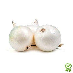 Cipolla Bianca da seme in bulbi Certificati
