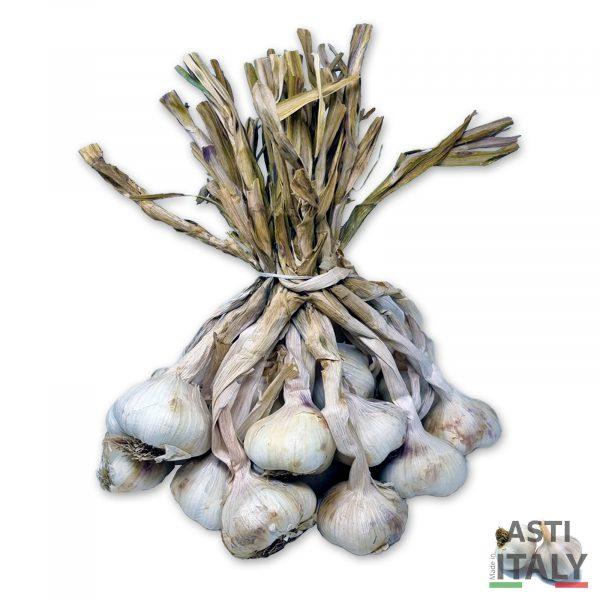Aglio bianco Asti-Italia da consumo e seme